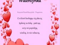 Katarzyna_Bogudał_2al371