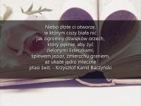 Kinga_Bartoszcze_2al