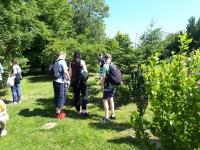 w_ogrodzie_botanicznym-3