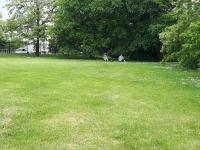 w_ogrodzie_botanicznym-7